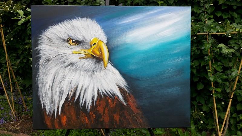 Mister_Eagle